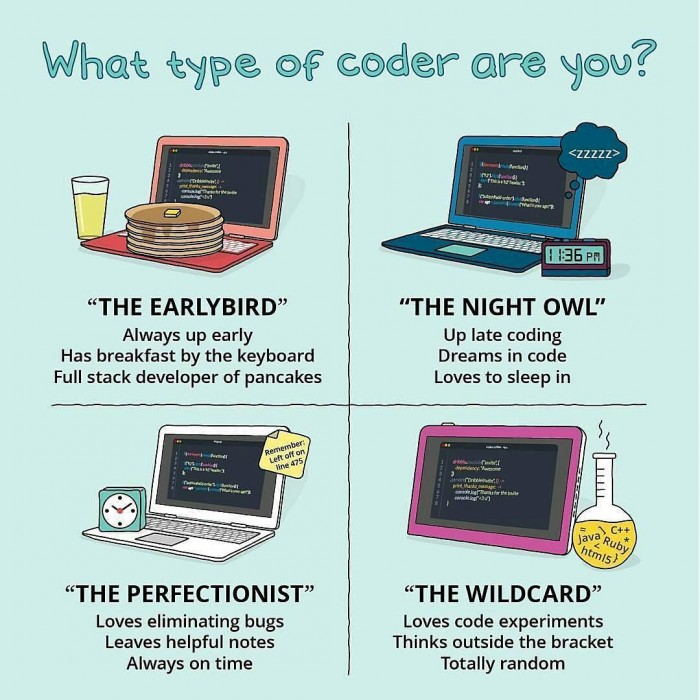 What type of coder are you?