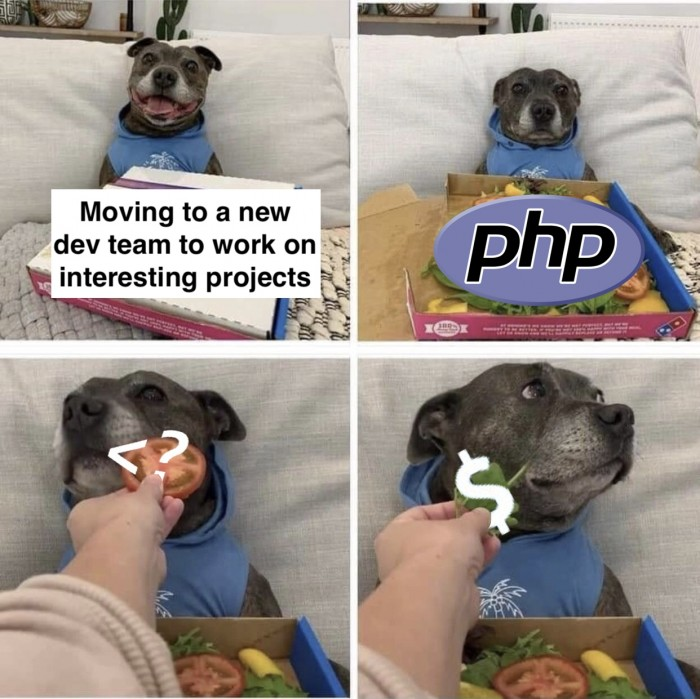 Moving to a new dev team
