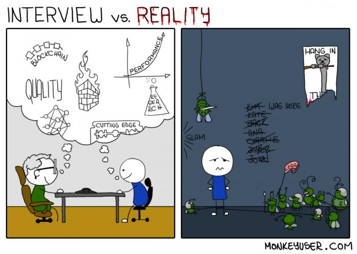 [monkeyuser] Interview vs. Reality