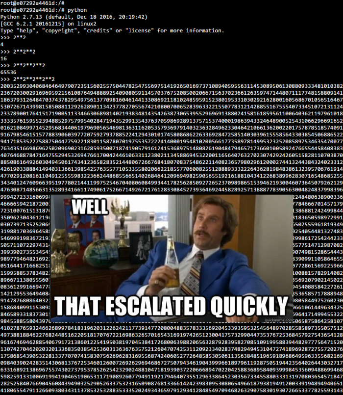 Terminal Overload!