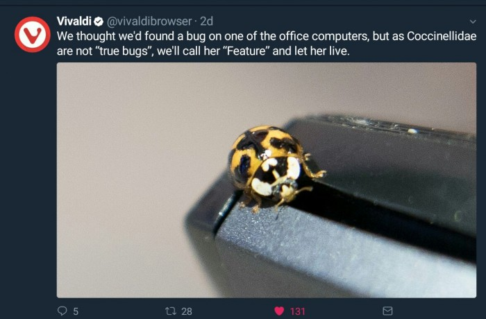 We thought we'd found a bug on one of the office computers