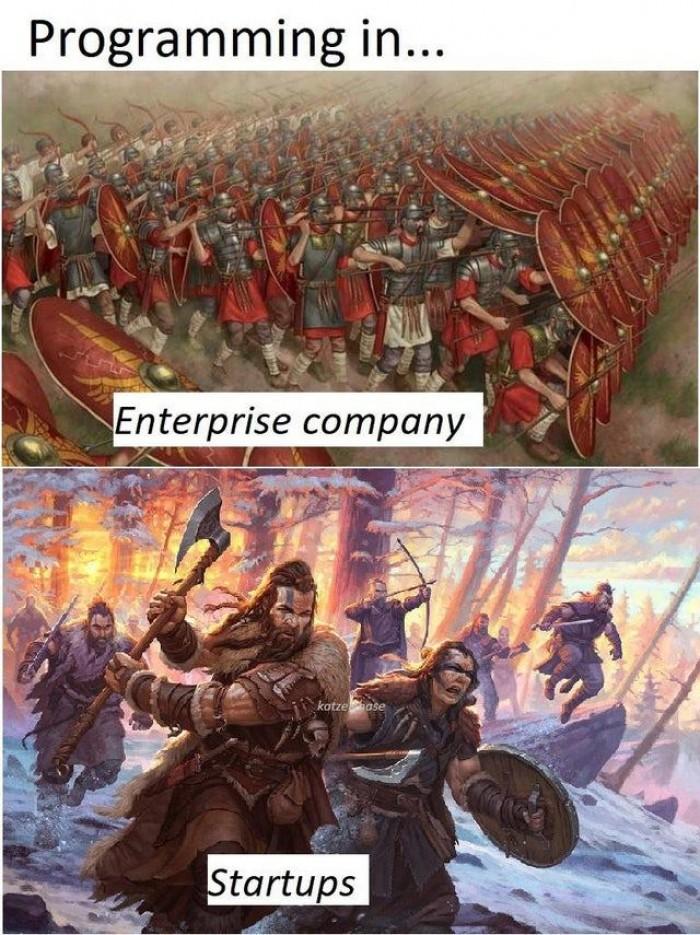 Enterprise Company vs Startups dev jobs