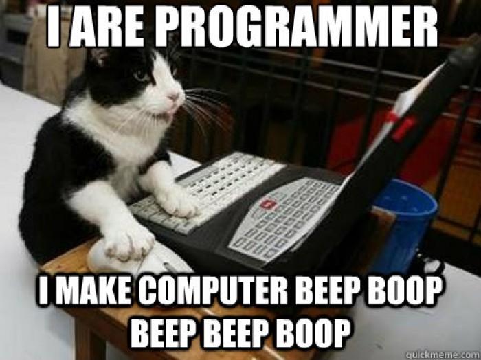 I are programmer