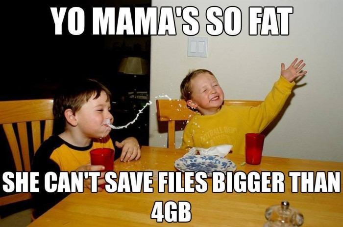 Yo Mama's so fat