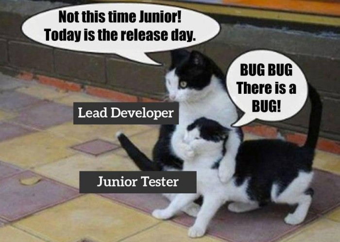 Being tester in one picture