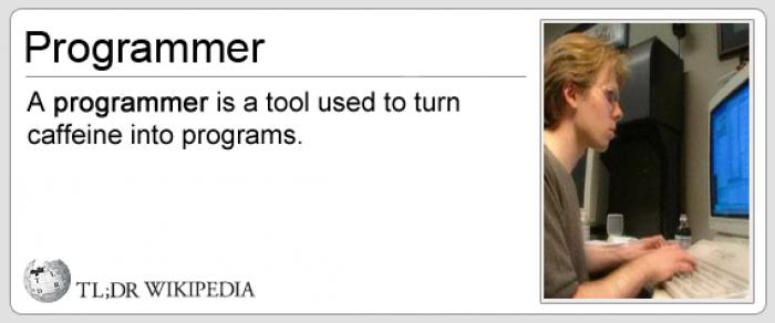 tl;dr programmer