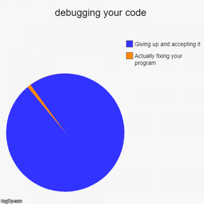 Debugging a program