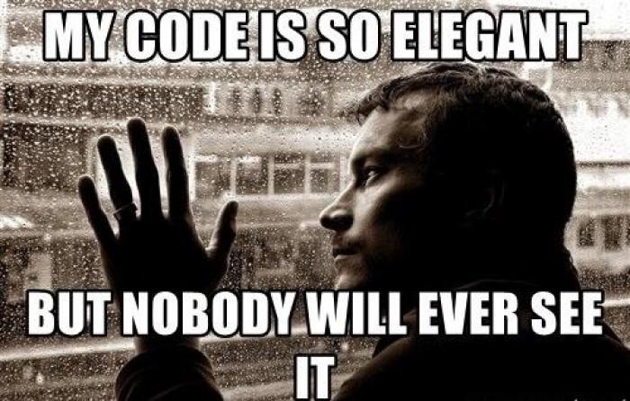 A true programmer struggle