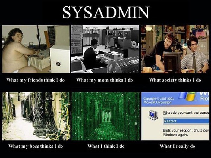 sysadmin is: