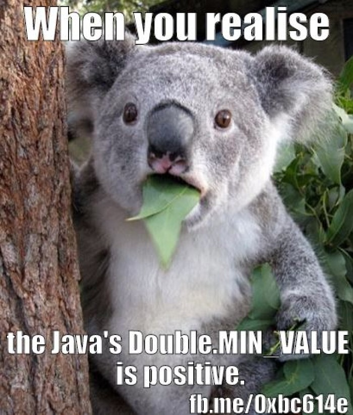 When you realise that Java's Double.MIN_VALUE is positive.