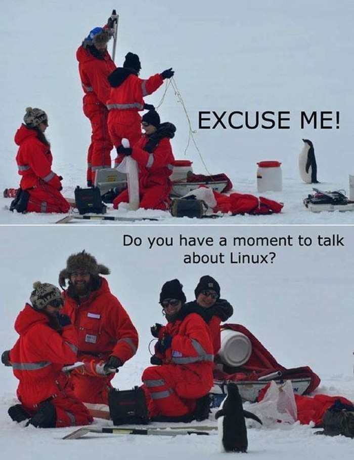 Can we talk about linux?