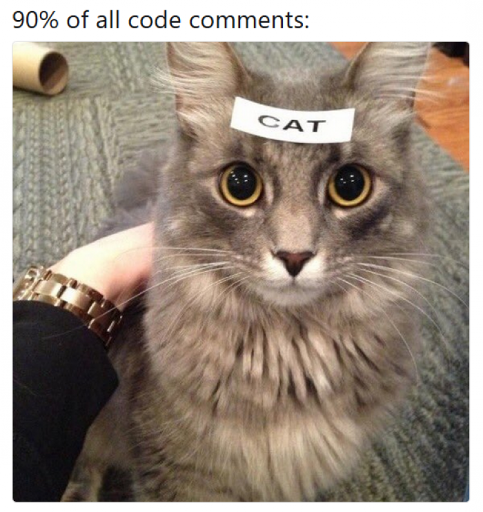 Code comments be like