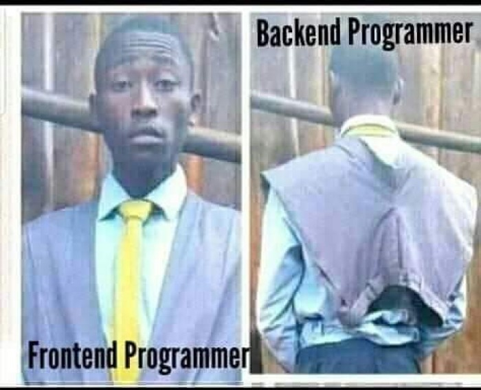 Frontend vs Backend programmer