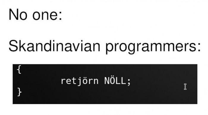 Bjørn the progræmmer