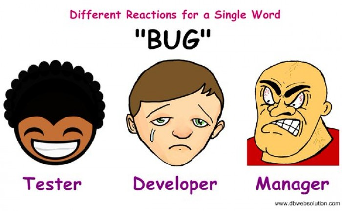 Bug - one word, different reactions