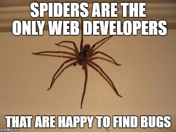 Web developers + bugs = big hug <3