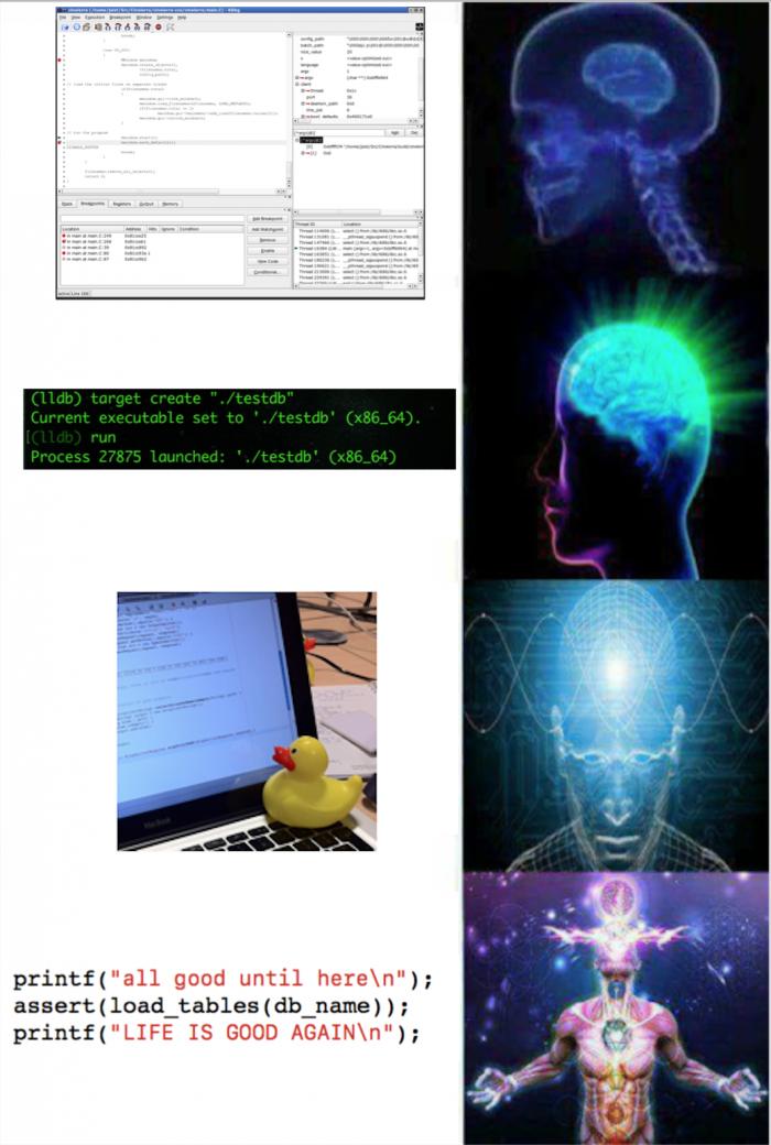 True debugging
