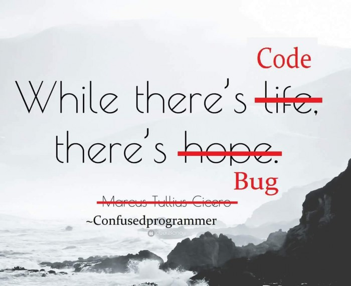 Programmer Quote