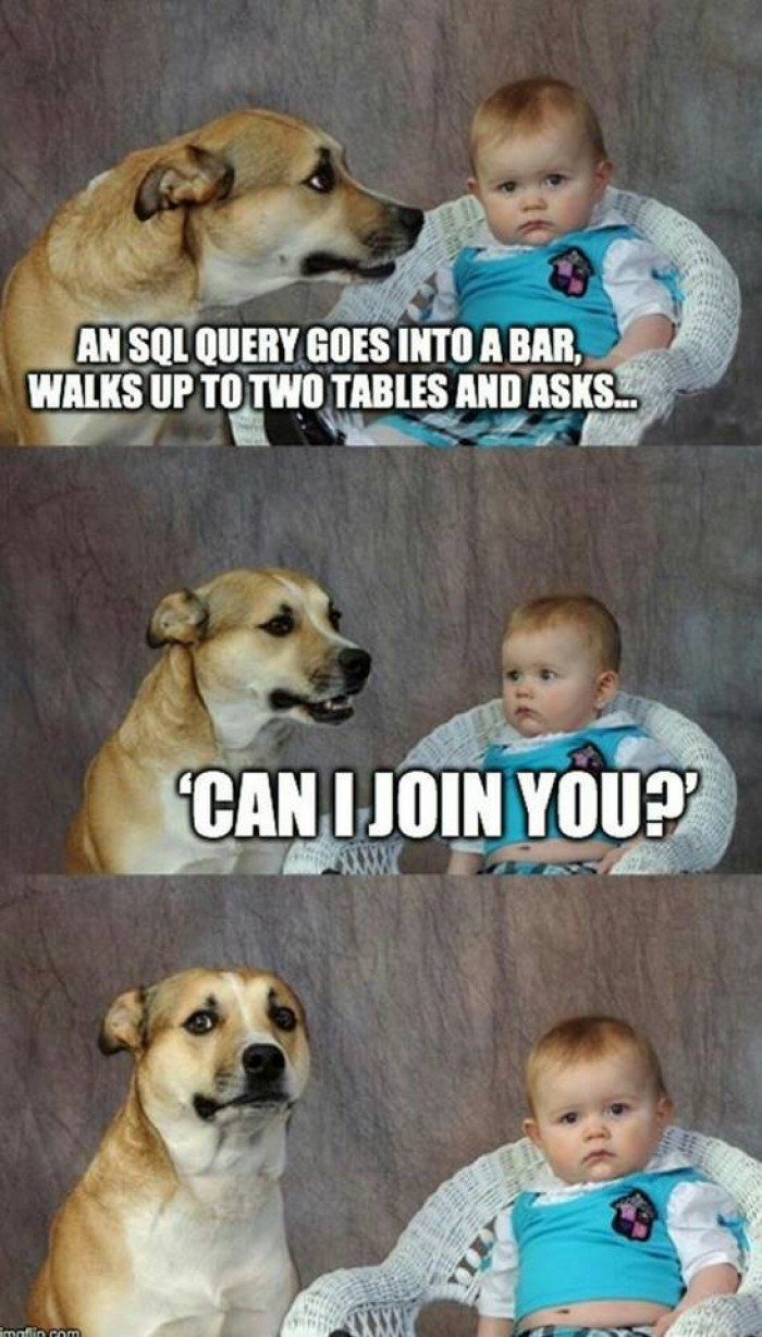 SQL query goes into a bar
