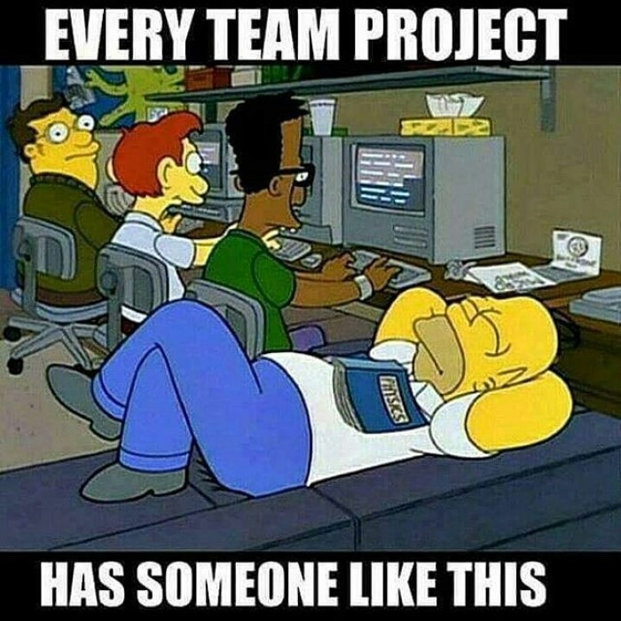 Every team project has someone like this