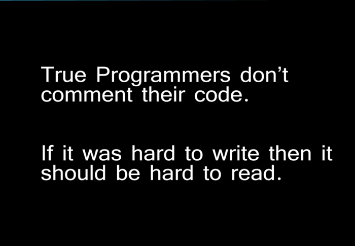 A True Programmer Don't Comment