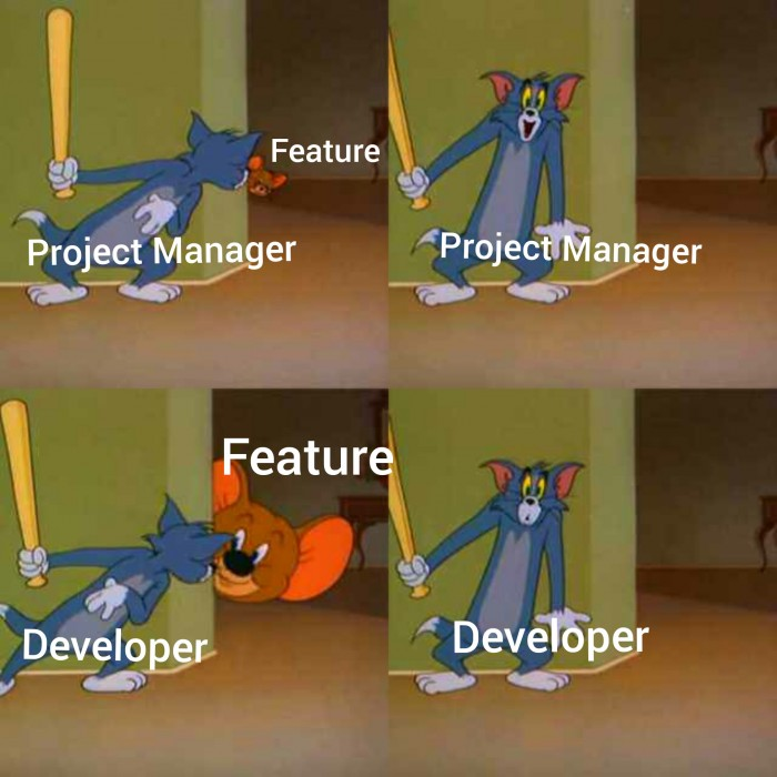 Project estimates
