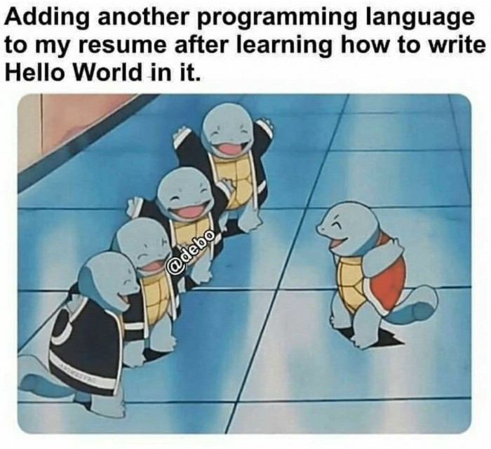 Adding another programming language to my resume