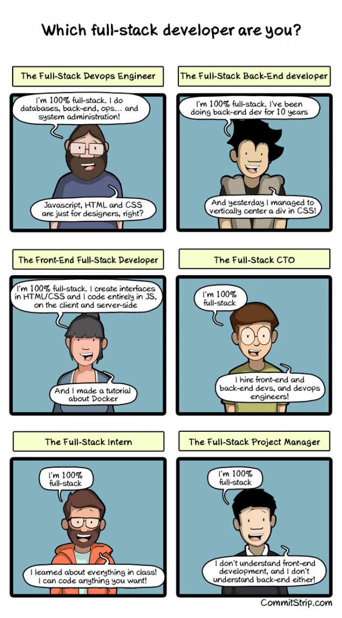 Which full stack developer are you?