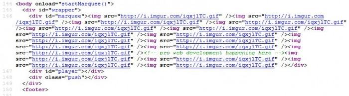 Pro Web Development