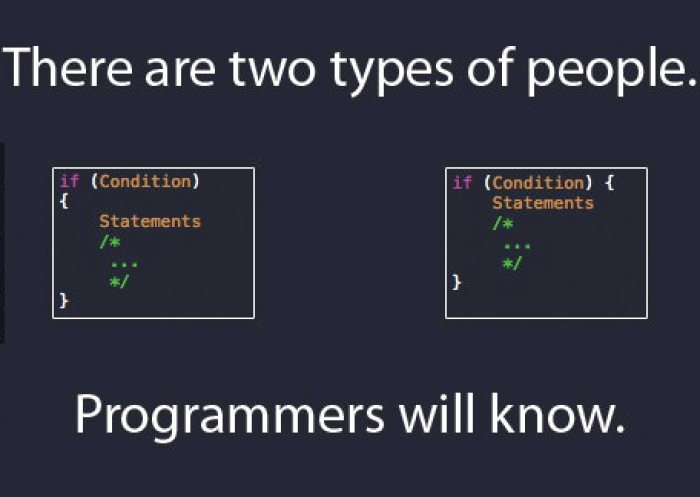 There are 2 types of programmers