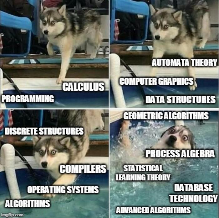 My CS university journey so far...