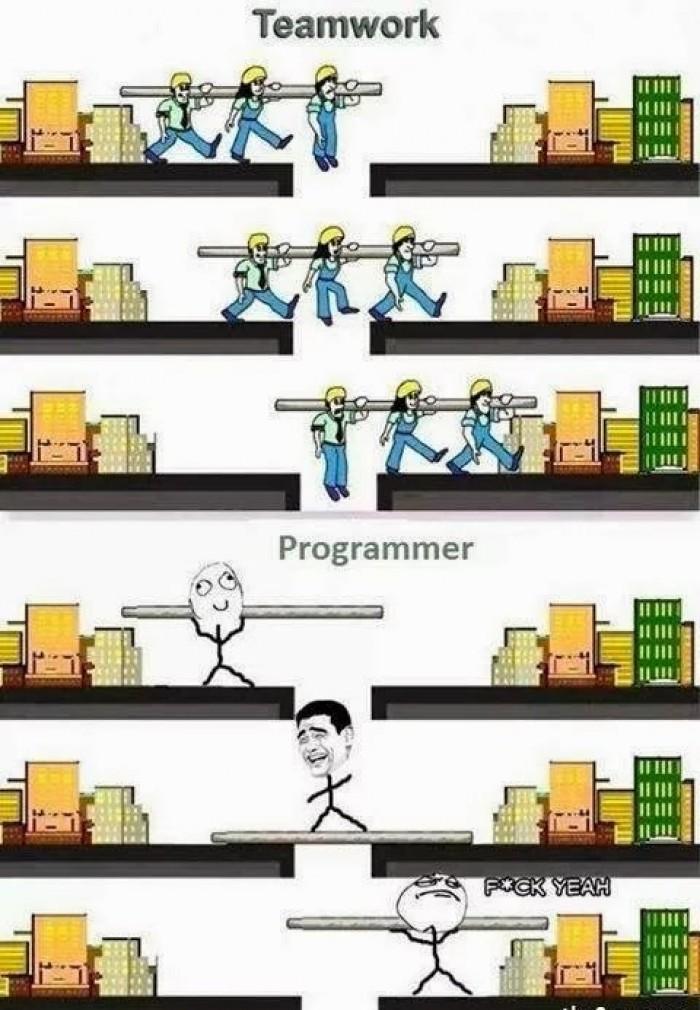 Programmer vs Teamwork