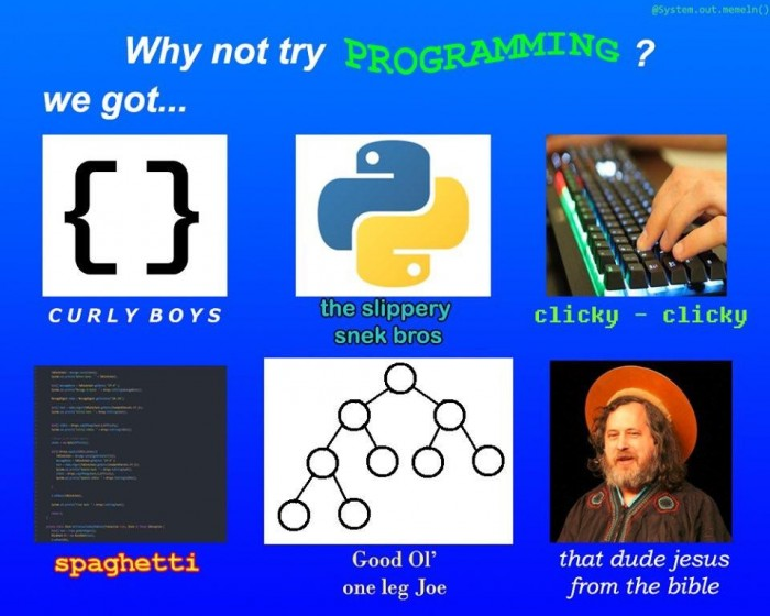 Why not try programming?