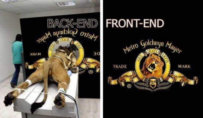 Front vs backend