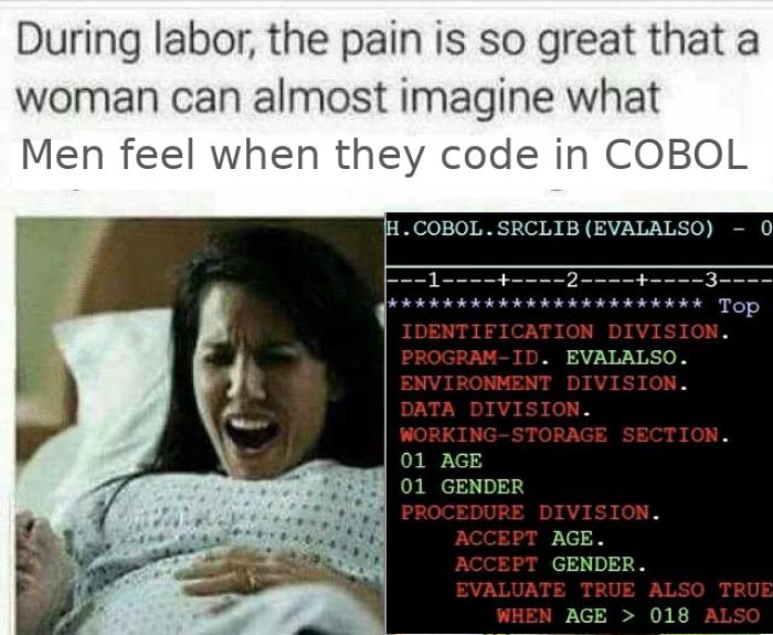 Coding in COBOL