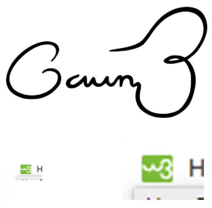 The W3Schools logo looks like the Gavin Belson signature edition